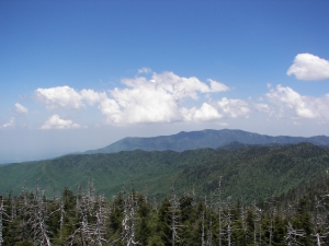 View from Clingman's Dome, Great Smoky Mtn National Park